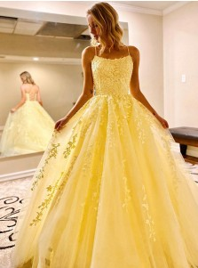 Daffodil Long Prom Dress with Appliques Princess Formal Dress