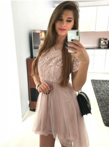 A-Line Round Neck Short Sleeves Blush Homecoming Dress with Lace