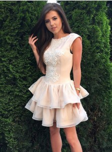 A-Line Round Neck Tiered Pearl Pink Lace Homecoming Dress with Appliques