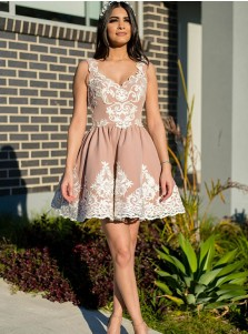 A-Line Scoop Short Blush Homecoming Dress with Appliques
