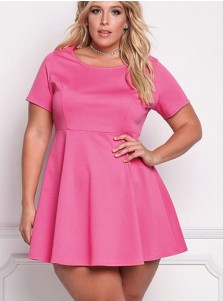 Fuchisa Round Neck Short Sleeve Plus Size Dress