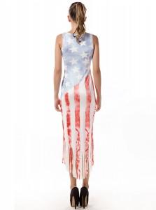 Fringes American Flag Patriotic Plus Size Printed Dress