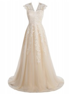 A-Line V-Neck Sweep Train Champagne Tulle Dress with Appliques
