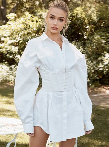 Sheath Dress For Women With Long Sleeve