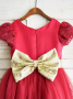 A-Line Jewel Dark Red Flower Girl Dress with Appliques